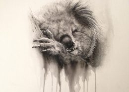charcoal-watercolour-Koala image appearing to vanish into the background