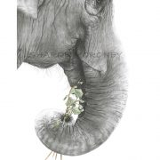 detailed charcoal-watercolour elephant head close-up, trunk clutching flowers, as a sign of hope