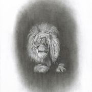 poignant charcoal image of a Lions head with sad closed eyes, seemingly disappearing into a black void-Sadness of the King